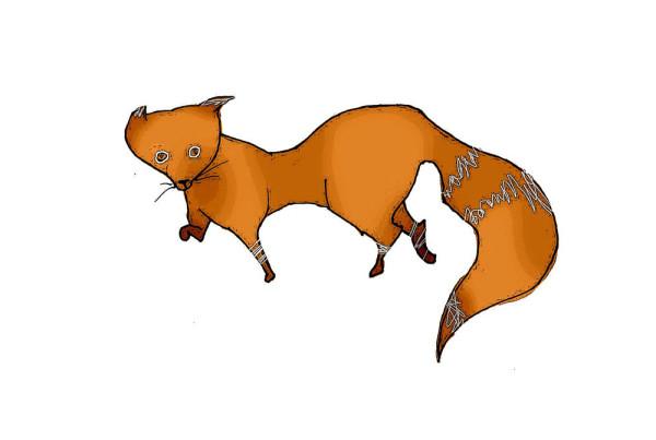 foxfox